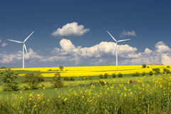 Rapeseed field and wind turbines. In spring Royalty Free Stock Image