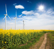 Rapeseed field with wind turbines Stock Images