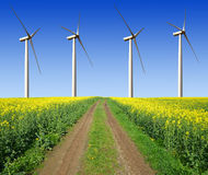 Rapeseed field with wind turbines. Against the blue sky Stock Photos