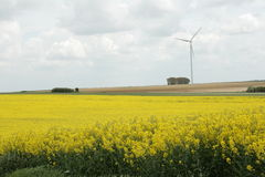 Rapeseed field and windmill in France Royalty Free Stock Photography
