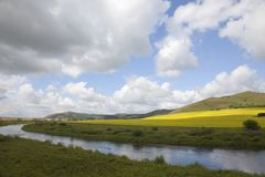 Rapeseed fields and river Royalty Free Stock Photo