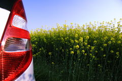 Rapeseed in germany 08. Area under cultivation - rear lights of a car in front Royalty Free Stock Images