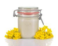 Rapeseed honey in a glass jar isolated. Stock Photos