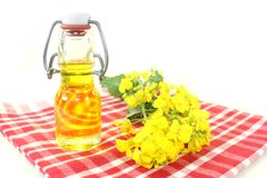 Rapeseed Oil Stock Photography