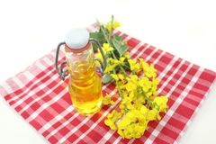 Rapeseed Oil Stock Image