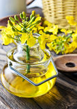 Rapeseed oil Stock Images