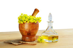 Rapeseed oil in bottle with rape flowers in wooden mortar Stock Photo