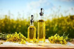 Free Rapeseed Oil Bottles Canola On Background Rape Field Stock Image - 149659661