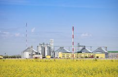 Rapeseed oil factory producing biodiesel. stock photo