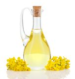 Rapeseed oil and flowers isolated over white. Rapeseed oil in decanter and oilseed rape flowers isolated on white background. Canola oil Stock Photos