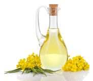 Rapeseed oil and flowers isolated over white. Rapeseed oil in decanter oilseed rape flowers and seeds isolated on white background. Canola oil Stock Photo