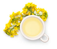 Rapeseed Oil and Flowers  on White Background. Rapeseed oil with rape flowers  on white background. Top view Royalty Free Stock Photography