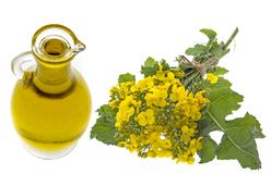 Rapeseed oil in a glass bottle Stock Photos