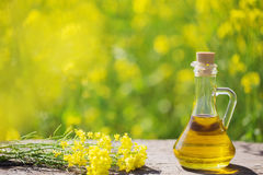 Rapeseed oil in field. Rapeseed oil canola in field royalty free stock photos