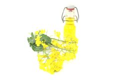 Rapeseed oil with rapeseed Stock Photos