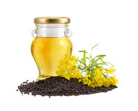 Rapeseed oil with seeds and flowers. Stock Image