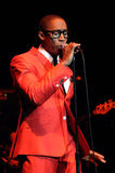 Raphael Saadiq performing live. Raphael Saadiq performing live at the Wiltern in Los Angeles in November 2009 Stock Photo