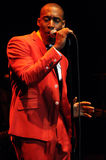 Raphael Saadiq performing live. Raphael Saadiq performing live at the Wiltern in Los Angeles in November 2009 Stock Photography