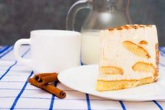Rapiécez le tiramisu italien de gâteau (dessert) d'un plat blanc cannelle Photographie stock libre de droits