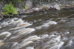 Rapid on the Cache la Poudre River Royalty Free Stock Photos