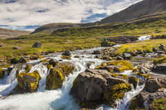 Rapid clean river - Iceland, Westfjords. Royalty Free Stock Image
