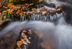 Rapid fall creek Royalty Free Stock Photos
