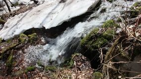 The rapid flow of a mountain stream in spring stock footage