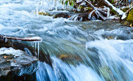 Rapid flow of water. Royalty Free Stock Images