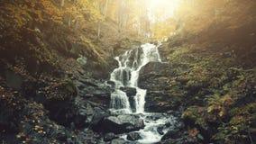 Rapid foamy mountainous forest waterfall stream stock video footage