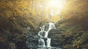 Rapid foamy mountainous forest waterfall stream stock image