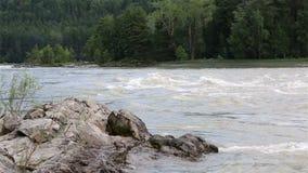 Rapid for the Katun River. Altai Krai. Royalty Free Stock Images