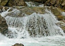 Rapid mountain brook. Stock Photo