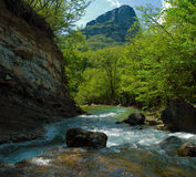 Rapid mountain river. In the Crimean canyon Stock Image