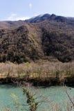 Rapid mountain river, Abkhazia Stock Photography