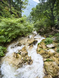 Rapid mountain river. Flows among green lush forest Royalty Free Stock Images