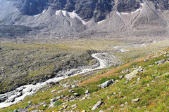 Rapid mountain stream, Hohe Tauern Alps, Austria Royalty Free Stock Photos