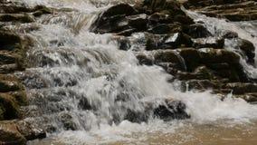 Rapid mountain stream stock video