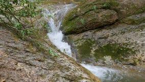 Rapid mountain stream stock footage