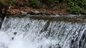 Rapid mountain stream and waterfall stock video