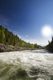 Rapid River. White water rapids through a forest Stock Photography