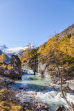 Rapid River in alps Stock Image