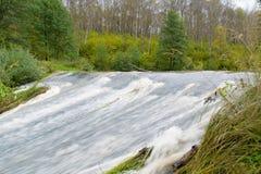 Rapid river forest. Autumn landscape Royalty Free Stock Photos