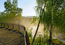 Rapid river. Royalty Free Stock Photography