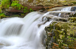 Rapid river. Stock Photography