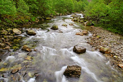 Rapid river. Royalty Free Stock Photos