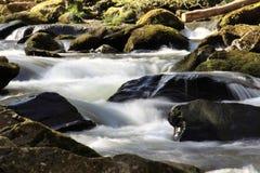 Rapid river stock photo