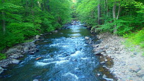 Rapid River Royalty Free Stock Photo