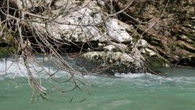 Rapid river stock video