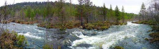 Rapid river in spring Stock Photo