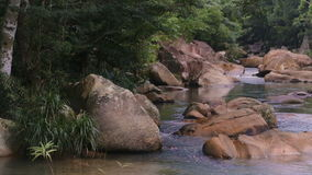 Rapid River in the tropical jungle. Nha Trang Vietnam stock video